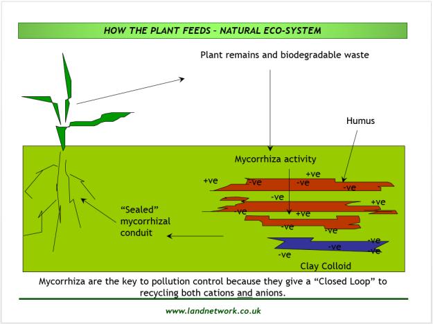 15.02.10.Soil mechanism 2