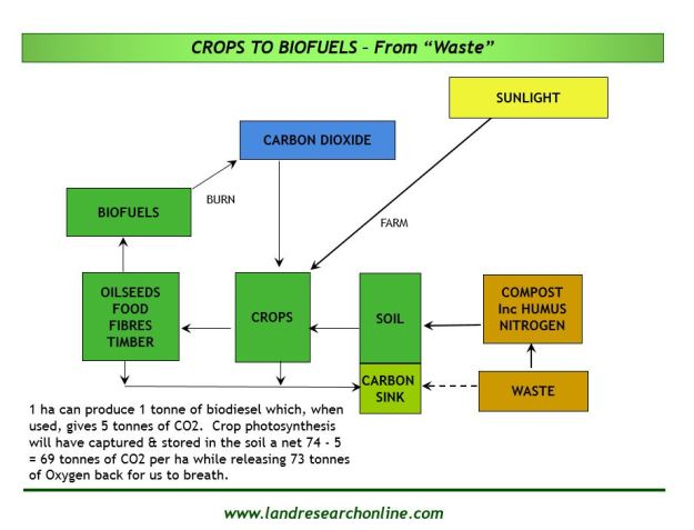 """Photosynthetic Carbon Capture and Storage in Soils  (PCCSS) or, in common sense language, using """"wastes"""" as fertilisers can be a safe and sustainable way of producing biofuels."""