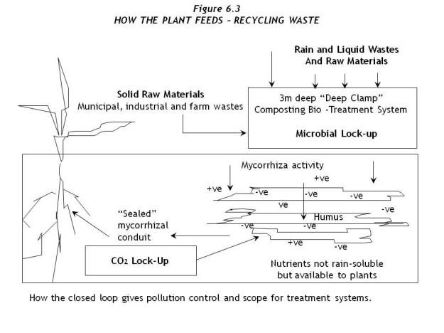 Fig6.3 HowPlantFeeds-Waste